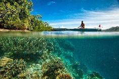 Protégez votre peau pour cet été et respectez les récifs coralliens