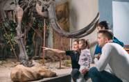 Les Musées sont gratuits à Marseille