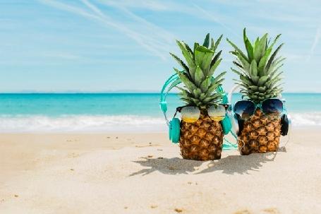 Comment seront les vacances cet été?