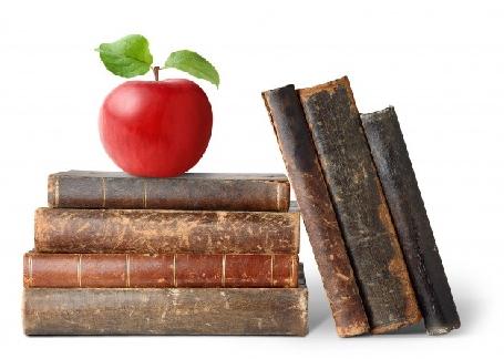Le cuir de pommes vous connaissez?