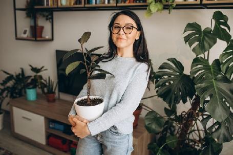 Et si vous faisiez garder vos plantes cet été ?