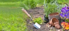 Et si on désherbait naturellement son jardin ?
