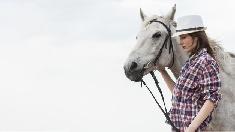 Mutilation sur des chevaux en France