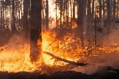 La Californie toujours sous les flammes