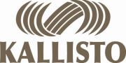 Contactez la société de technologie 3D Kallisto.