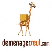 Appelez le site Web Demenagerseul.com