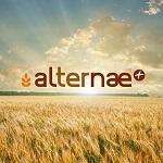 Appelez le téléphone de support Alternae